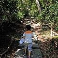 2013-11-09忠義山親山步道081.jpg
