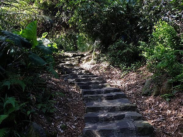 2013-11-09忠義山親山步道085.jpg
