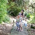 2013-11-09忠義山親山步道087.jpg