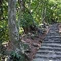 2013-11-09忠義山親山步道088.jpg