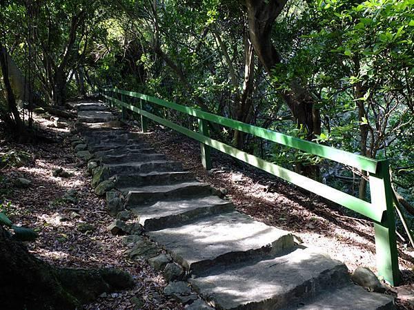 2013-11-09忠義山親山步道089.jpg