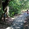 2013-11-09忠義山親山步道090.jpg
