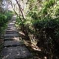 2013-11-09忠義山親山步道091.jpg