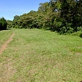 2013-11-09忠義山親山步道094.jpg