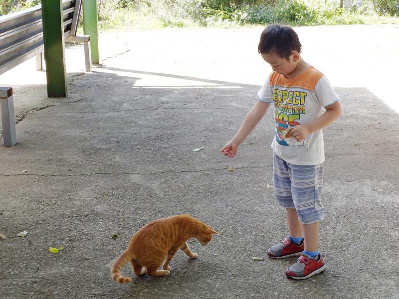 2013-11-09忠義山親山步道099.jpg