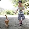 2013-11-09忠義山親山步道100.jpg