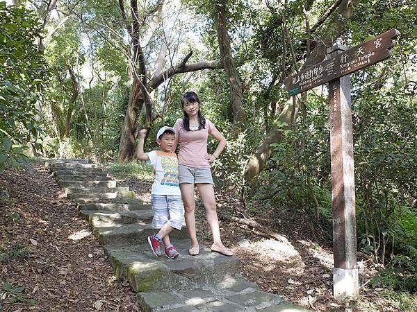 2013-11-09忠義山親山步道103.jpg