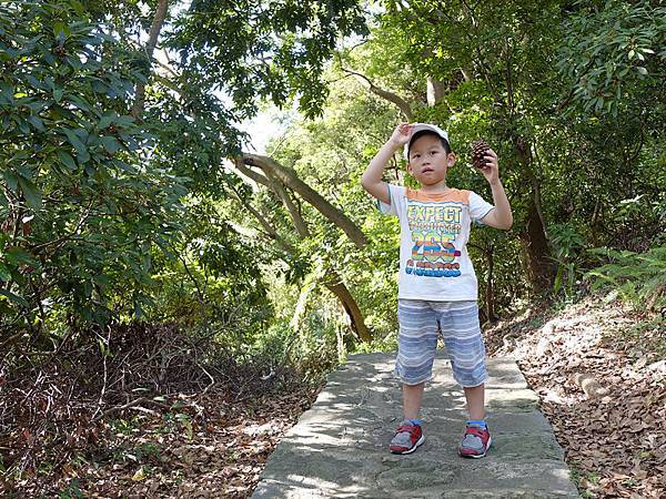 2013-11-09忠義山親山步道108.jpg