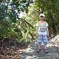 2013-11-09忠義山親山步道109.jpg