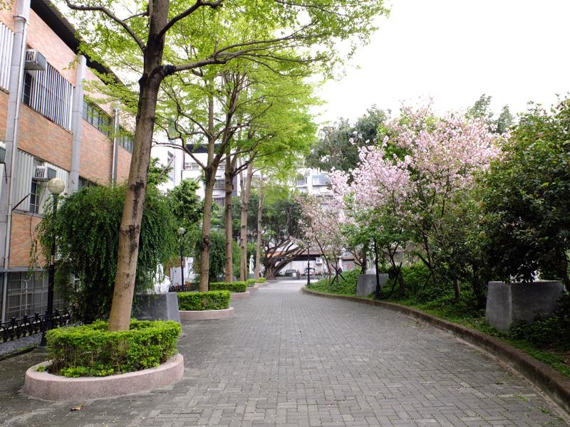 2014-04-06阿巴的私房菜017.jpg