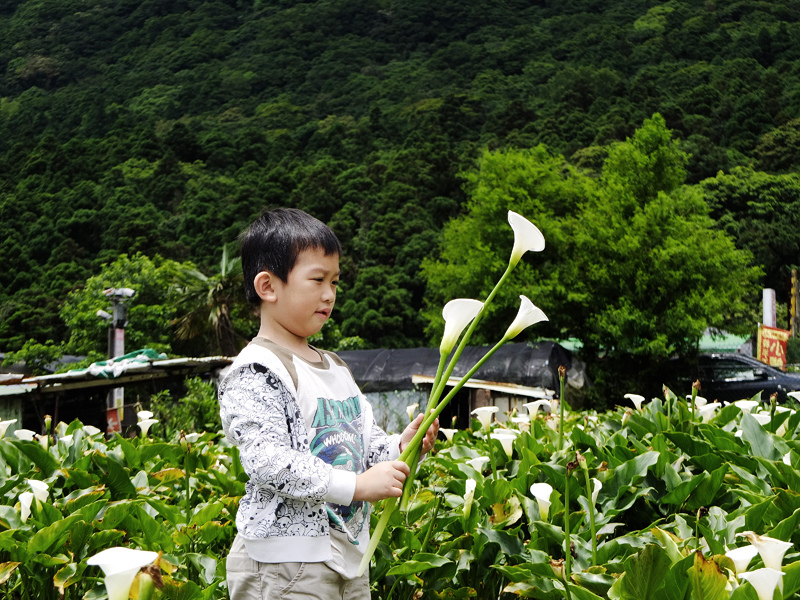 2014-05-18甘味坊024.jpg