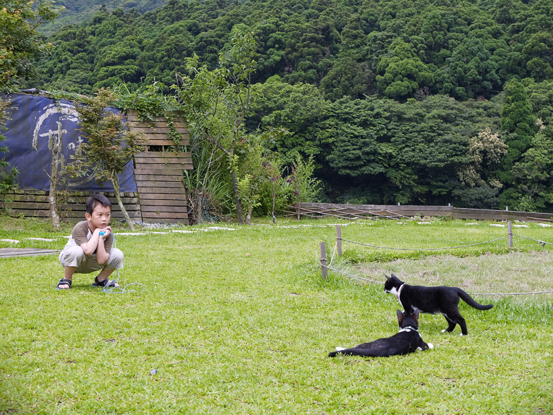 2014-05-18甘味坊061.jpg