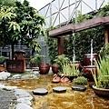2014-06-15台北花卉村007.jpg