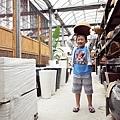 2014-06-15台北花卉村010.jpg