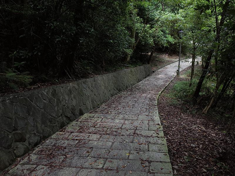2014-07-13大溝溪親水步道029.jpg