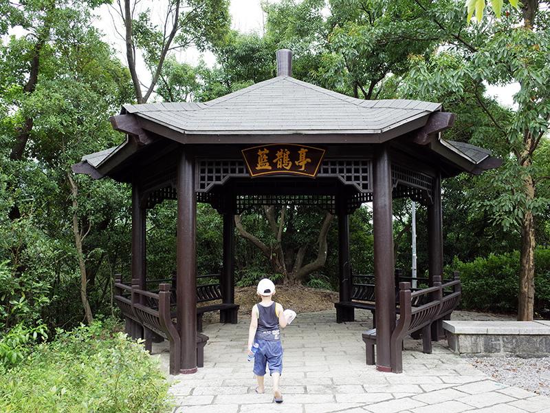 2014-07-13大溝溪親水步道040.jpg