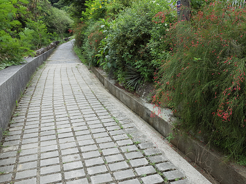 2014-07-13大溝溪親水步道093.jpg