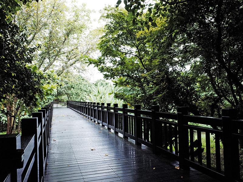 2014-08-10關渡自然公園011.jpg