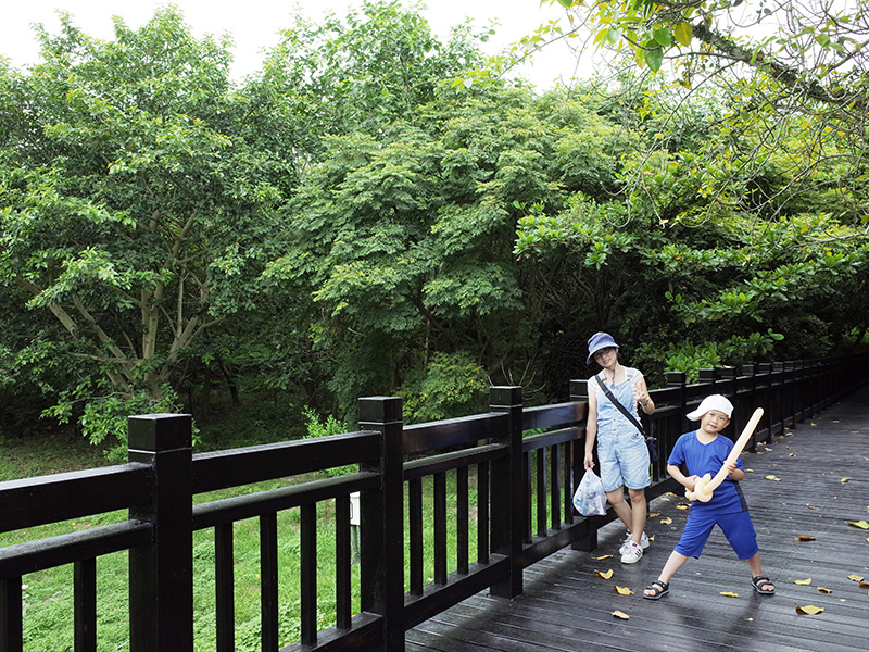 2014-08-10關渡自然公園013.jpg