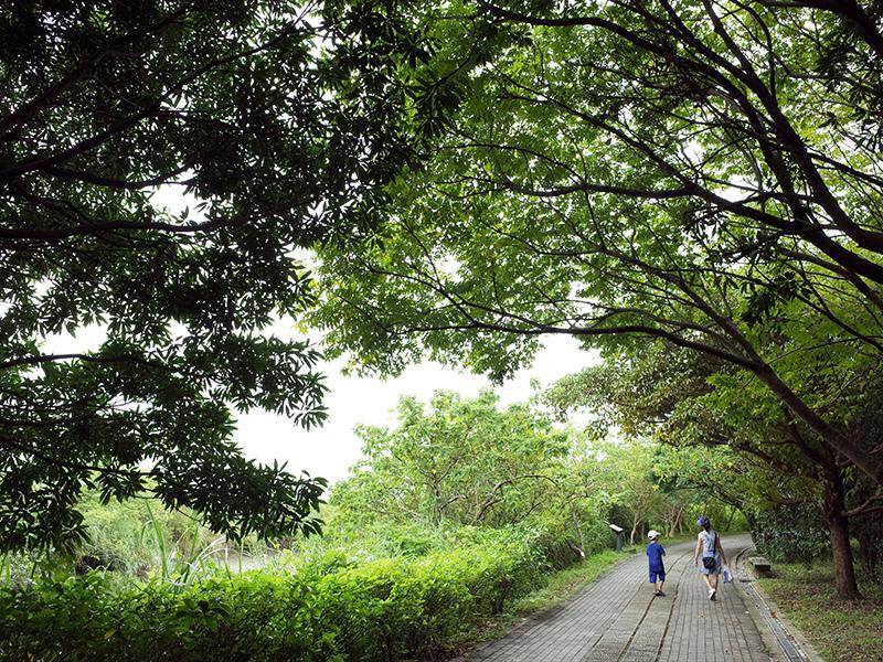 2014-08-10關渡自然公園029.jpg