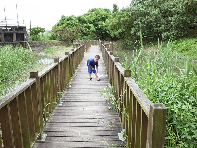 2014-08-10關渡自然公園050.jpg