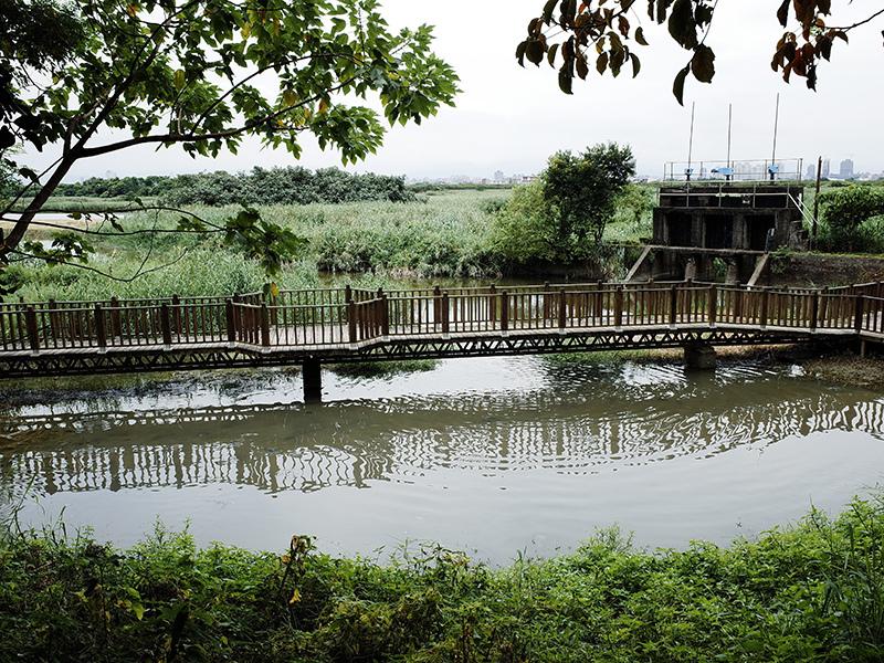 2014-08-10關渡自然公園053.jpg