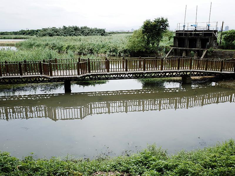 2014-08-10關渡自然公園054.jpg