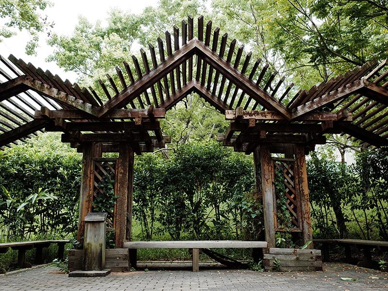 2014-08-10關渡自然公園056.jpg
