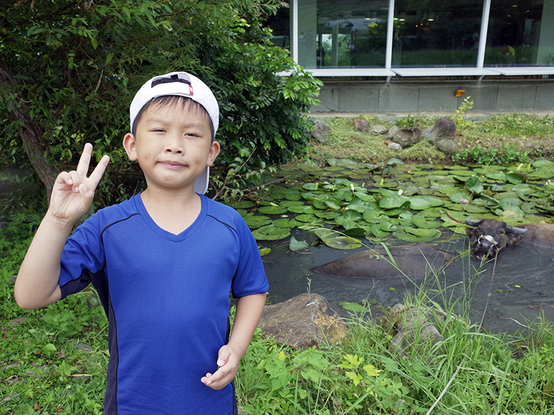 2014-08-10關渡自然公園075.jpg