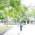 2014-10-04公園010.jpg