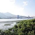 2014-10-18關渡宮010.jpg