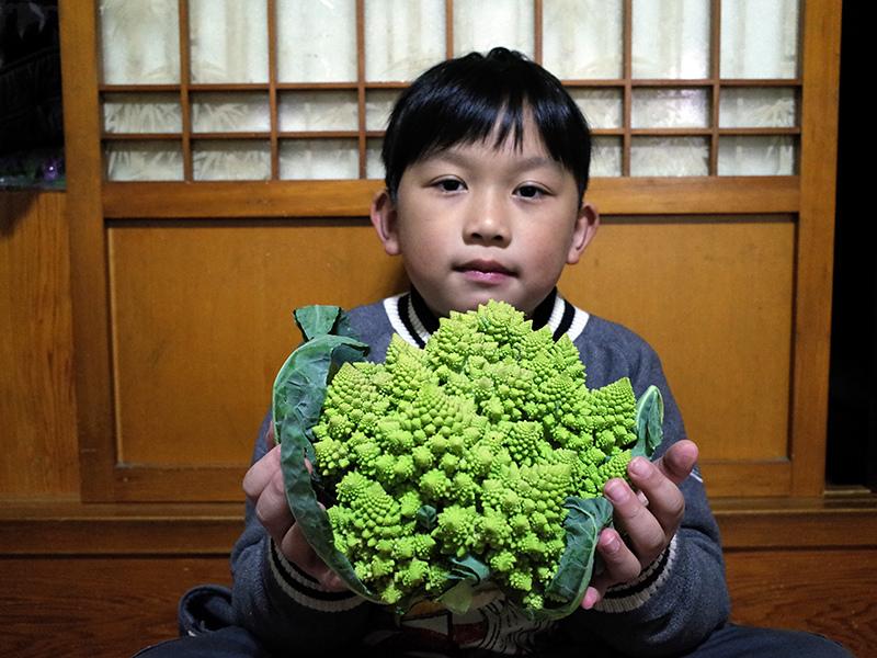 2015-01-31幫奶奶做菜003.jpg