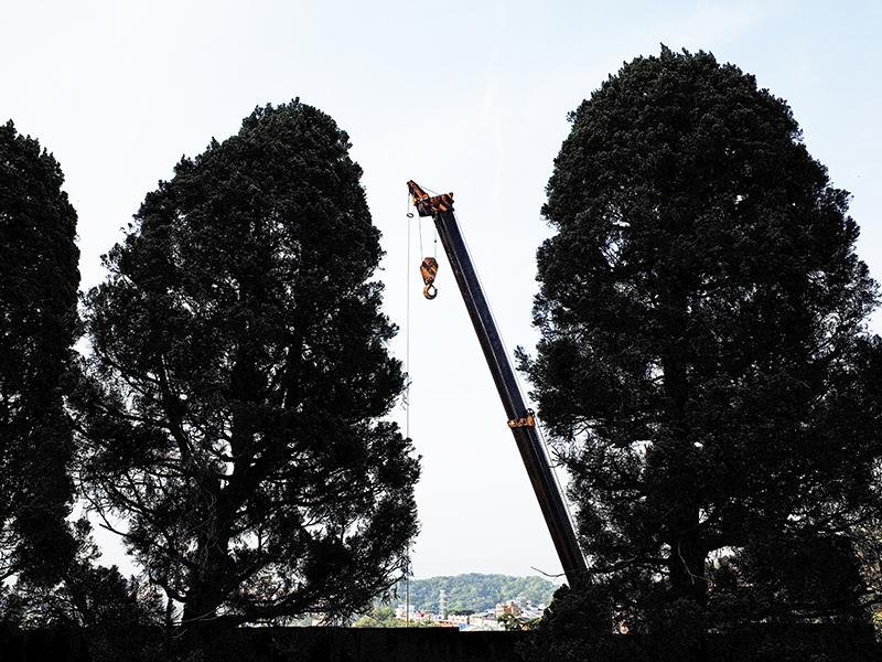 2015-04-15承天禪寺015.jpg