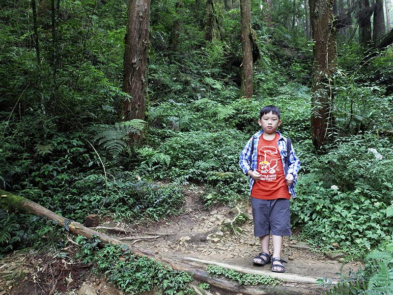 2016-08-27忘憂森林089.jpg