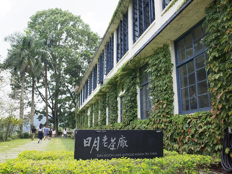 2016-08-28日月老茶廠019.jpg