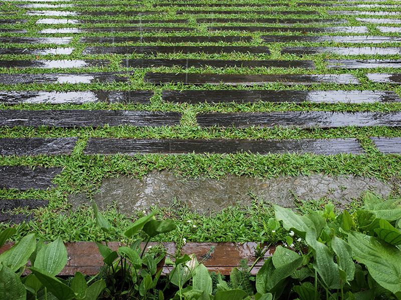2016-08-28日月老茶廠059.jpg