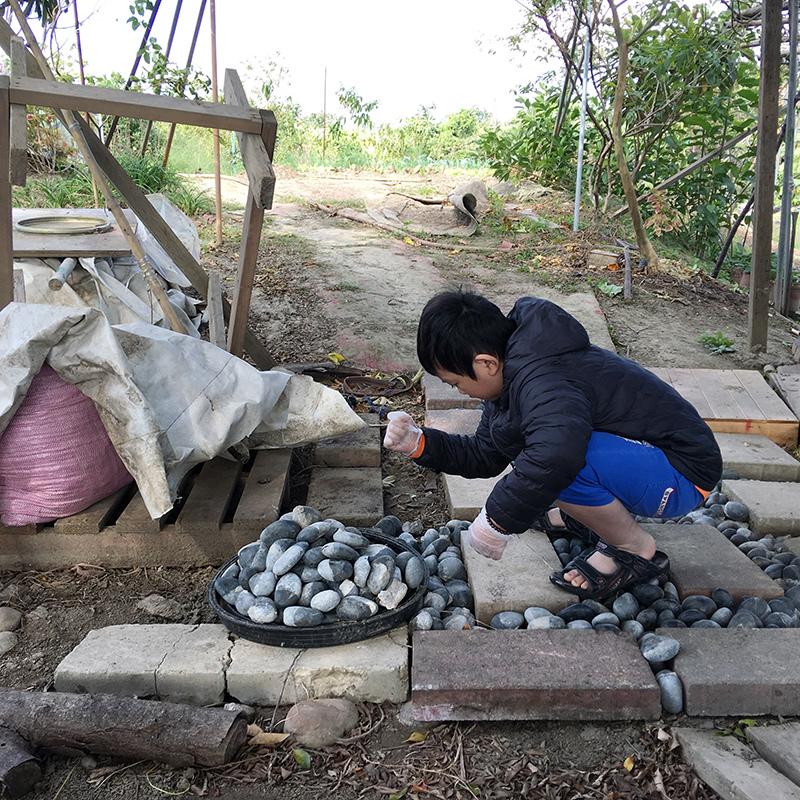 2016-12-17施肥002.jpg