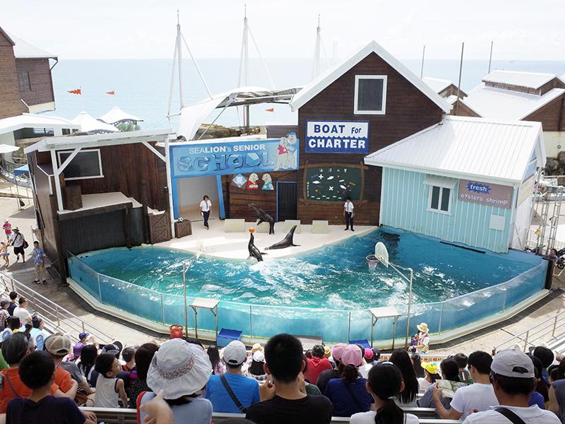2017-07-11遠雄海洋公園058.jpg