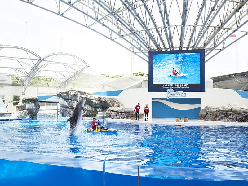 2017-07-11遠雄海洋公園110.jpg