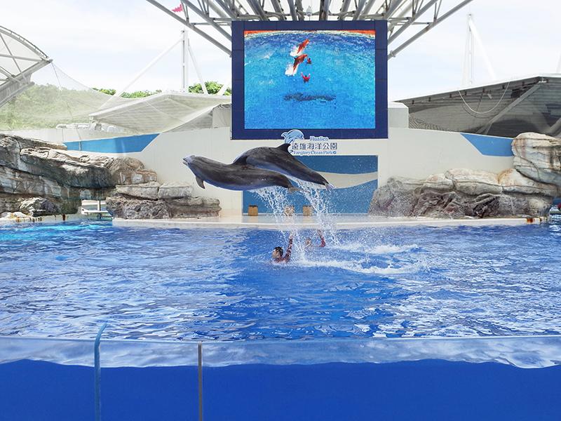2017-07-11遠雄海洋公園130.jpg