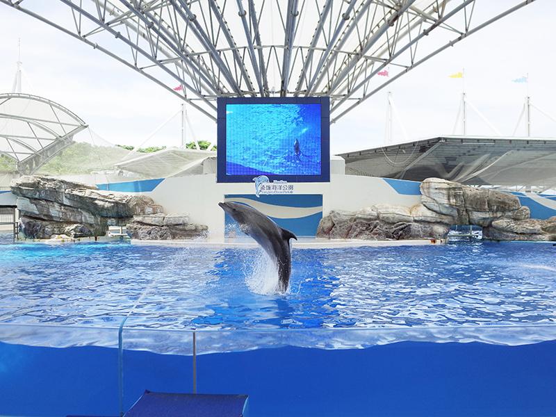 2017-07-11遠雄海洋公園132.jpg