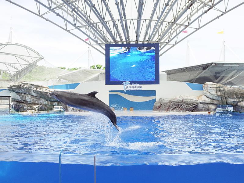 2017-07-11遠雄海洋公園134.jpg