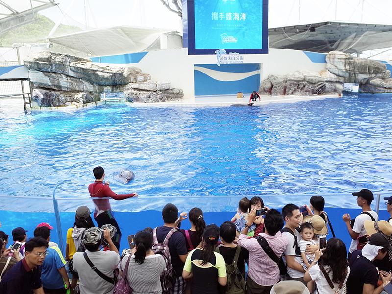 2017-07-11遠雄海洋公園144.jpg