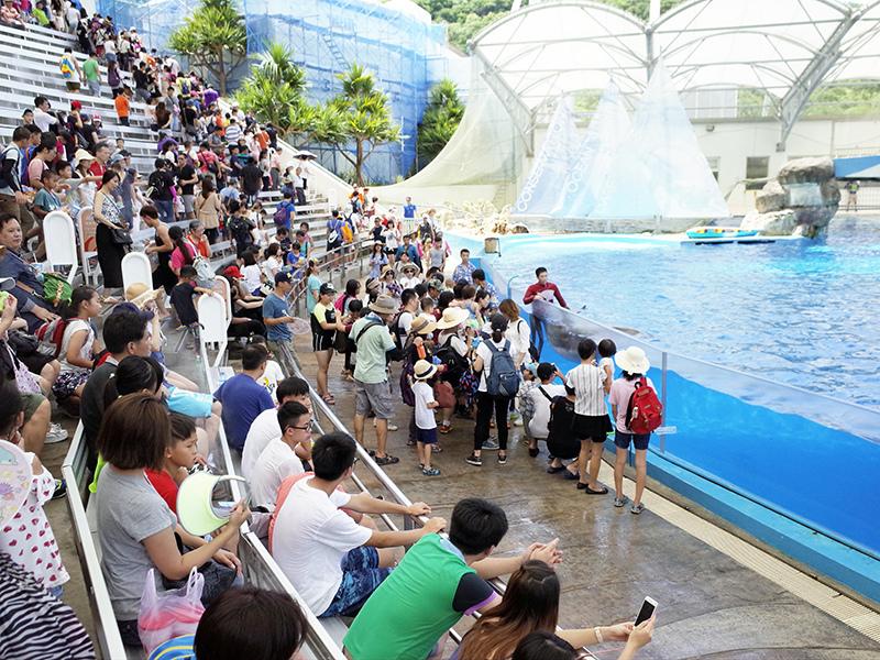 2017-07-11遠雄海洋公園143.jpg