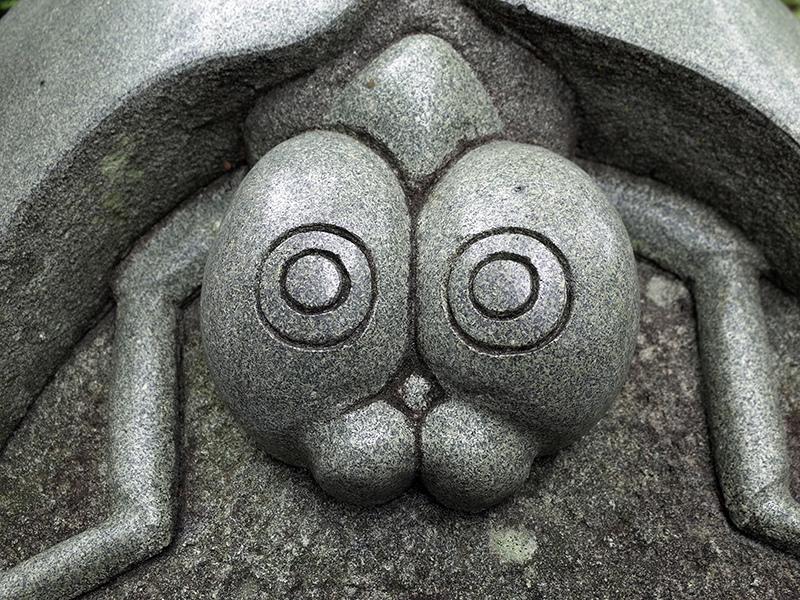 2017-12-03士林官邸菊展眾星雲菊026.jpg