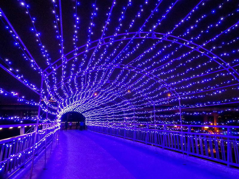 2019-02-21堤防花燈090.jpg