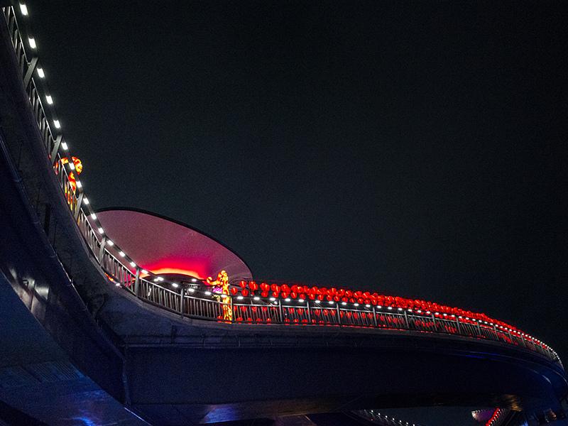 2019-02-21堤防花燈098.jpg