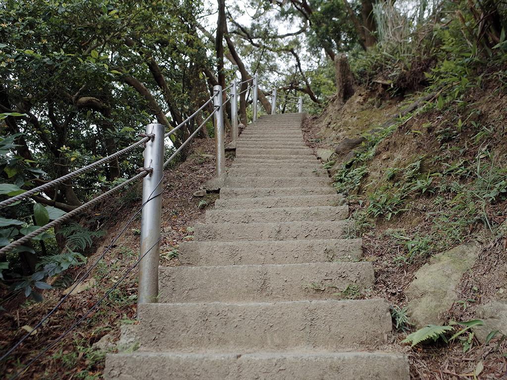 2019-05-05桐花公園-火焰山018.jpg