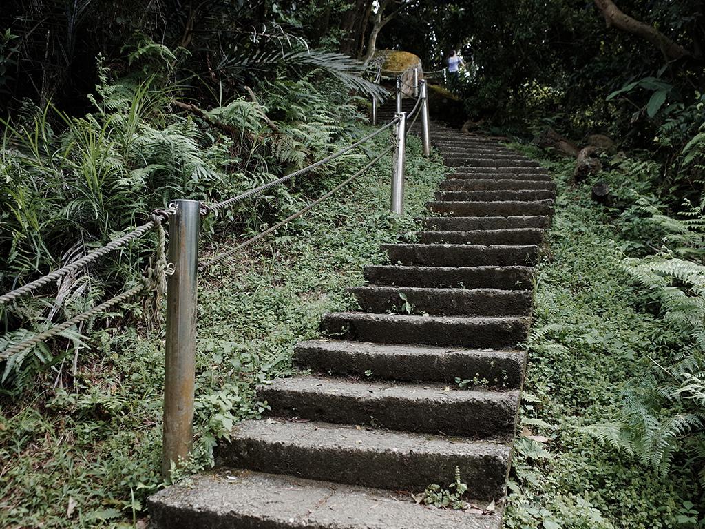 2019-05-05桐花公園-火焰山039.jpg
