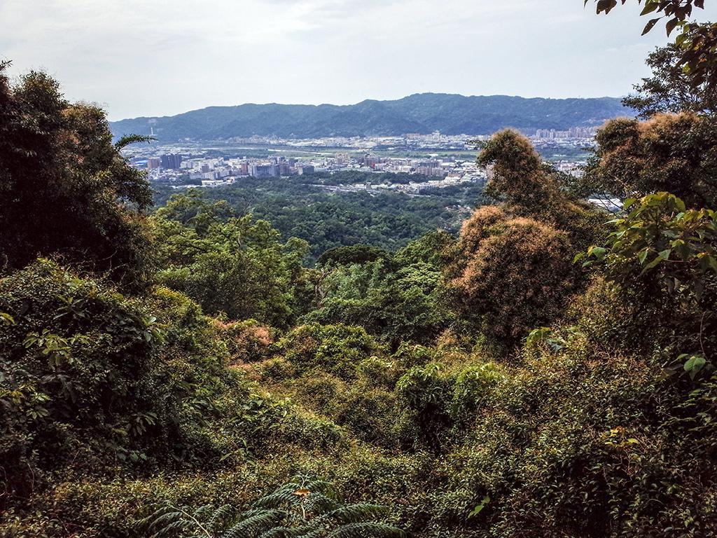2019-05-05桐花公園-火焰山040.jpg